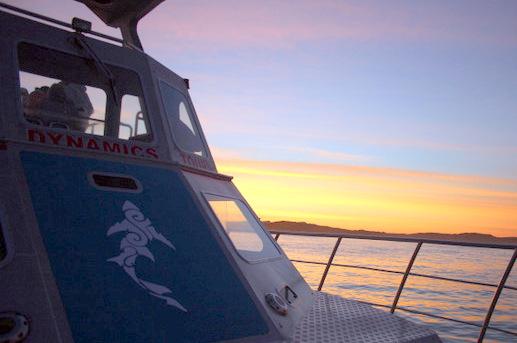 Interns aboard Slashfin & Dreamcatcher